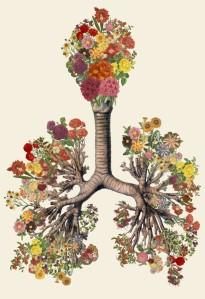 nature body love